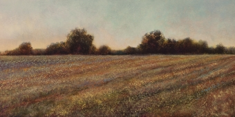 Long's Field